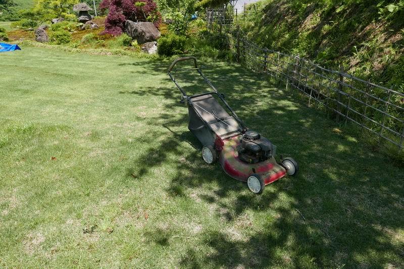 芝刈り機と芝の風景写真