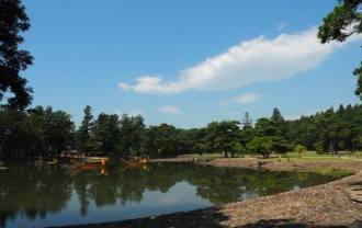 奥州平泉毛越寺の庭園の風景