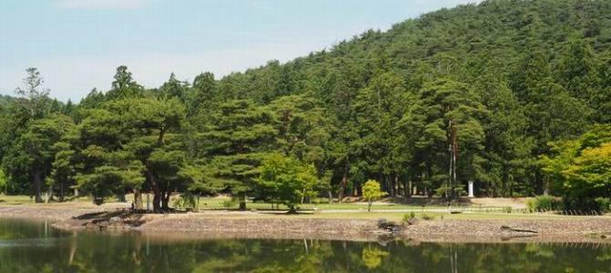 毛越寺の庭園の風景写真