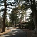 x-t3で撮影する画質の評価青葉城址公園(仙台城)の園内の風景写真