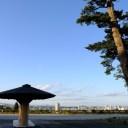 仙台城址公園の風景