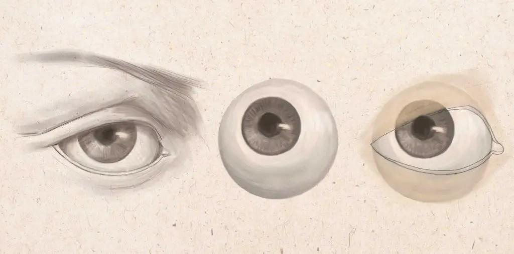 フィギュア眼球