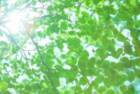 夏はクーラーを使いすぎず涼しく!効果抜群なエアコンの節電対策9選