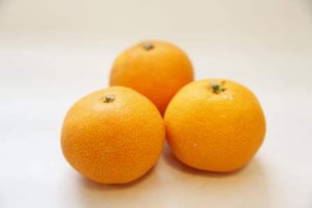 【トレインむき】食べやすいし超きれい!みかんの皮のむき方のコツ3選