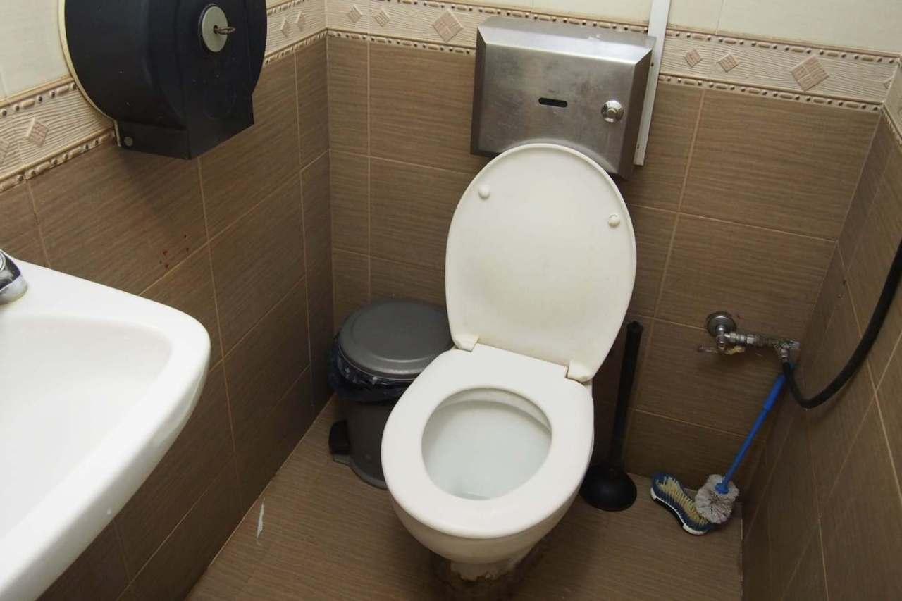 雑菌が舞う!トイレの便座のフタを開けっ放しにすることの悪影響3選