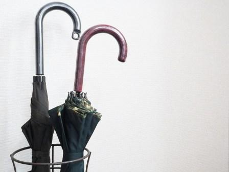 異臭やカビが発生!傘を濡れたまま放置することによる4つのデメリット