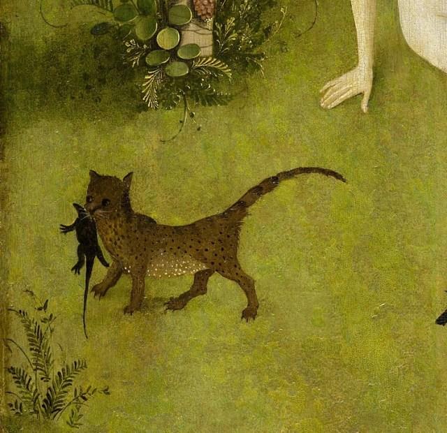 Рай Босха кошка изловила земноводное