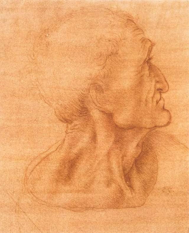 Леонардо да Винчи голова Иуды