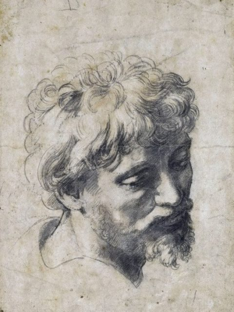 Рафаэль голова молодого апостола