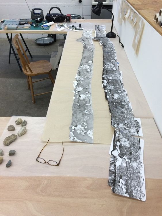 FALLEN TREE (2015), in progress in Meg Alexander's studio. The work will exhibit in TREES II at Gallery Kayafas in June/July 2018.