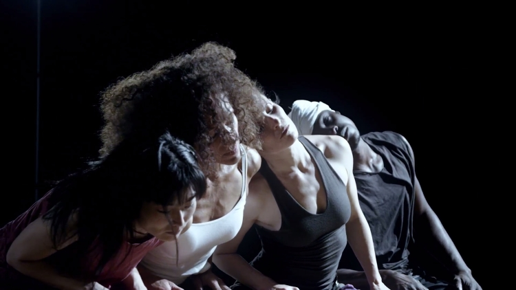 Still image from CONFERENCE OF THE BIRDS by ANIKAYA Dance Theater/Wendy Jehlen.