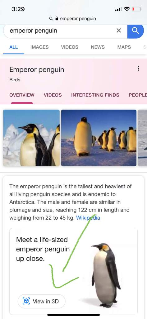 View in 3D - Meet a life-sized Emperor Penguin up close.