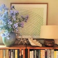 Interior Design by Anna Hackathorn