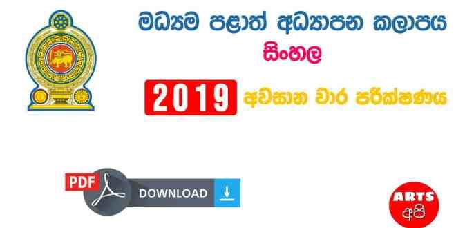 Advanced Level Central Provincial Final Term Test Paper Sinhala Grade 13 2019