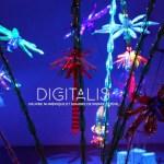 Digitalis, une oeuvre numérique et sonore de Pierre Estève