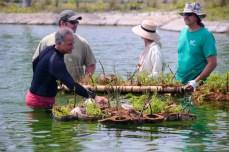 Releasing Floating Islands