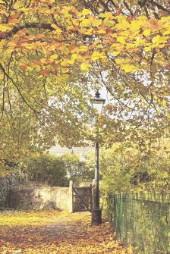 Painterly photographs at The Wharf, Tavistock