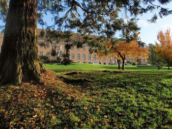 Exeter University asks 'why do the arts and culture matter?'