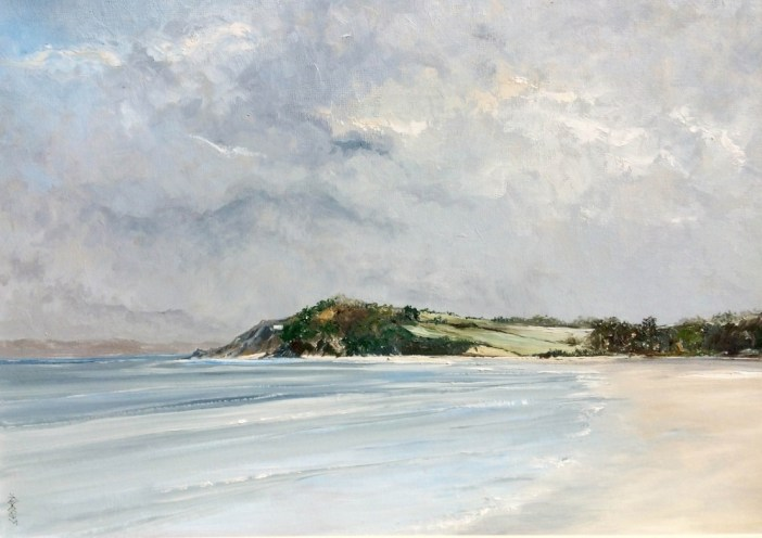Chris Elsden's South Hams coastline captured in Kingsbridge