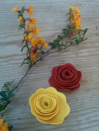 Yellow, rust, orange blooms