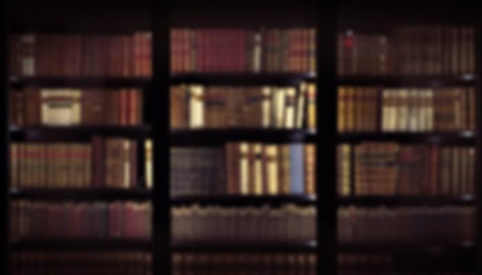 Pandemia E Apagamento – Bibliotecários Sem Fronteiras