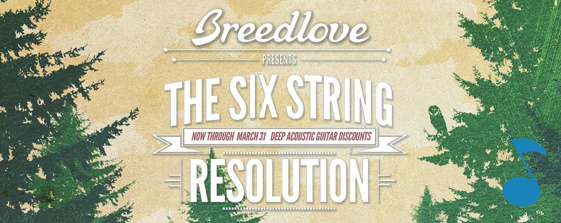 breedlove six string revolution