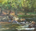 """Honorable Mention """"Eno River"""" by James Keul of Durham, NC"""