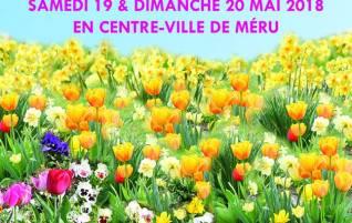 Salon du jardin : 19-20 Mai à Méru