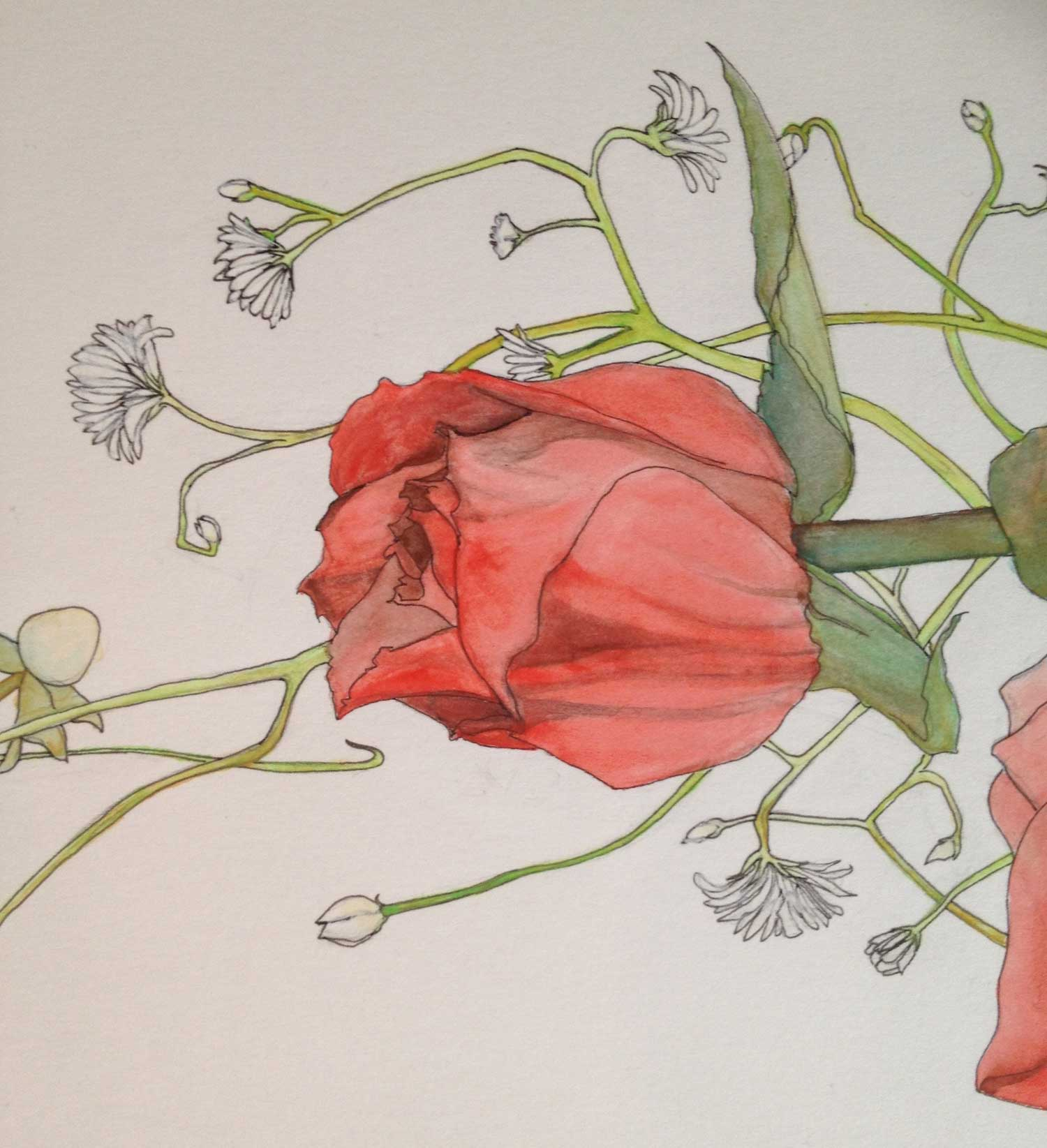 Dreamy watercolor painted rose ketubah