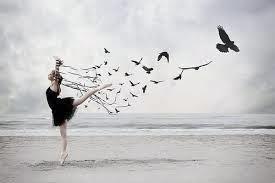 birddancer