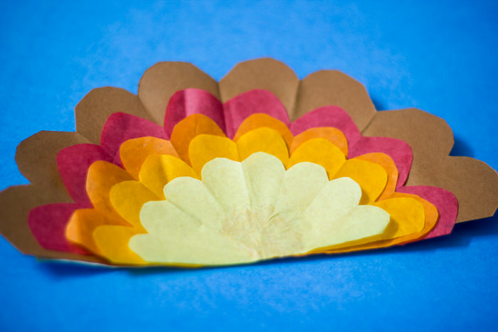 tissue paper turkey-8037