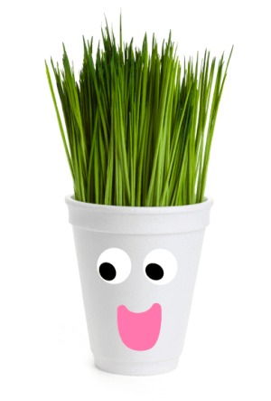 Not all Styrofoam is bio-degradable and the rest just ends up in landfills. This Earth Day, make the best out of waste with these recycled Styrofoam crafts.