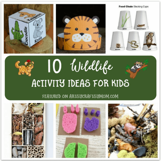 10 Wildlife Theme Activities For Kids To Do At Home