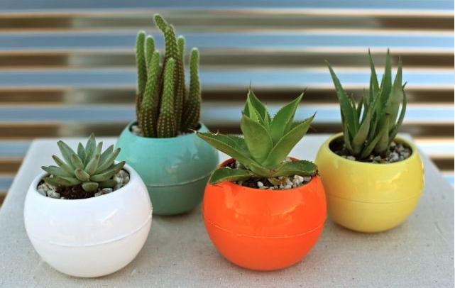 friday design finds  bkb ceramics  u2013 artsy forager