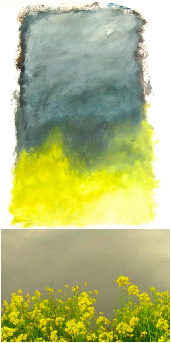 FMO_RandR_arcata marsh collage