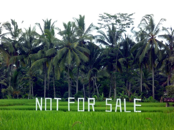 6. bali not for sale