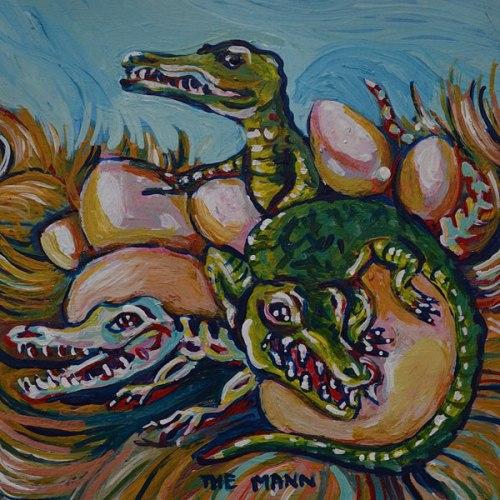 alligatornest