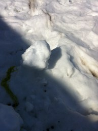 melted snow man