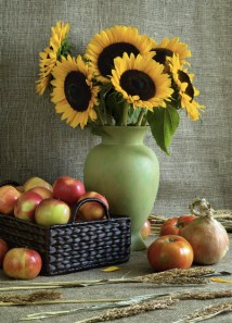 Sunflowers and Tomatoes