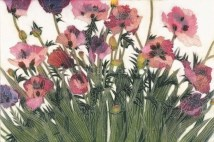Spring Poppies IV