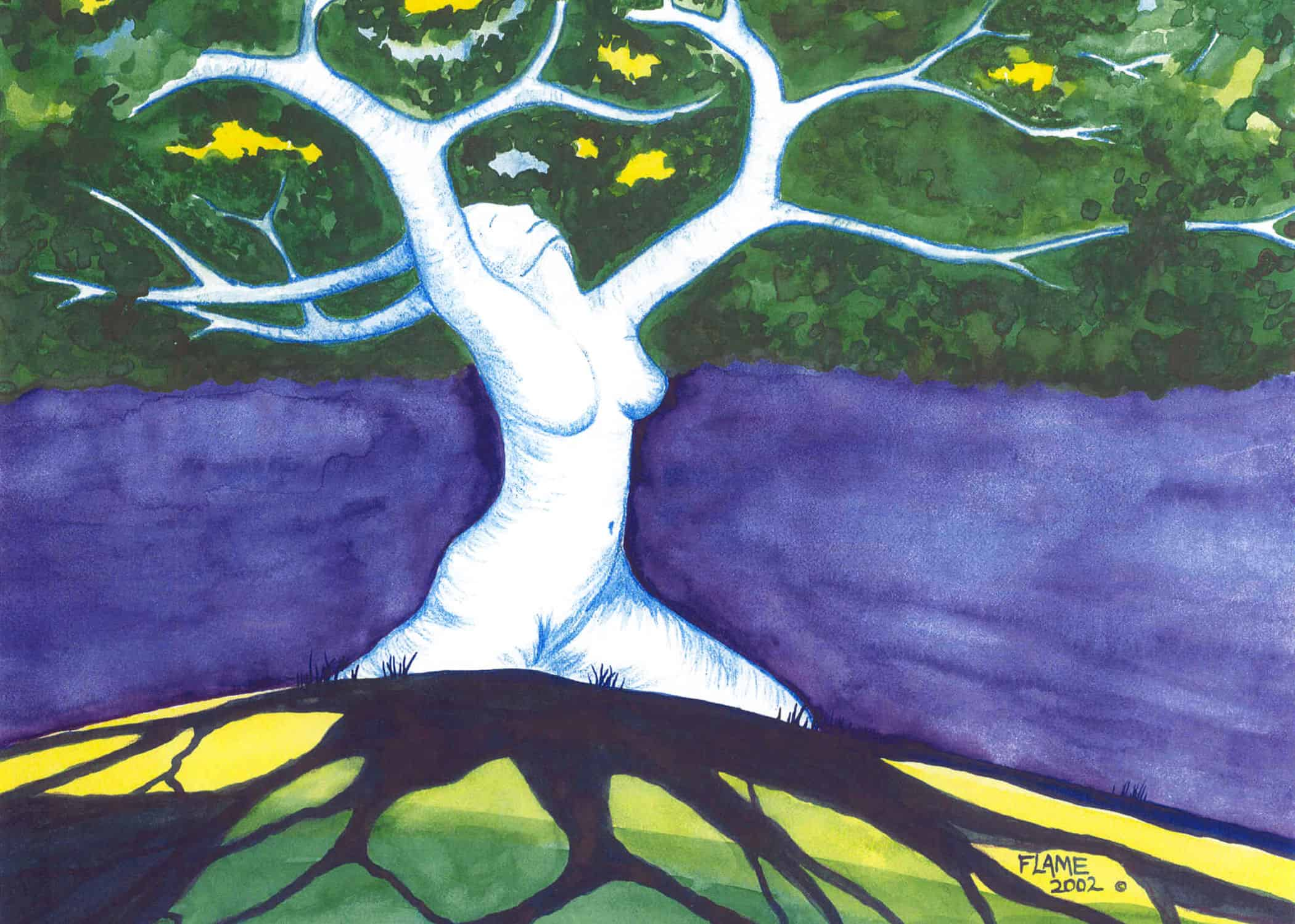 Tree of Life - Dryad reaches to the sky on a sunny, Spring day