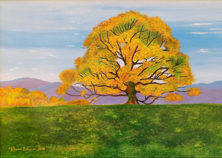 Rich gold and yellow colors of the Earlysville Tree - Autumn's fiery shades in the foothills of Virginia's Blue Ridge Mountains