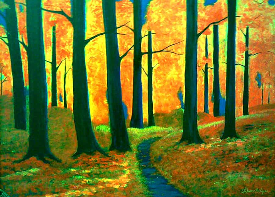 A cool path into the vibrant autumn woods, leading the way to an introspective winter