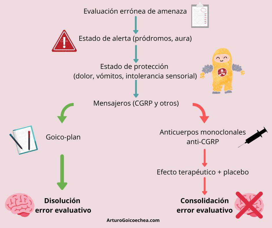 Cgrp anticuerpos monoclonales