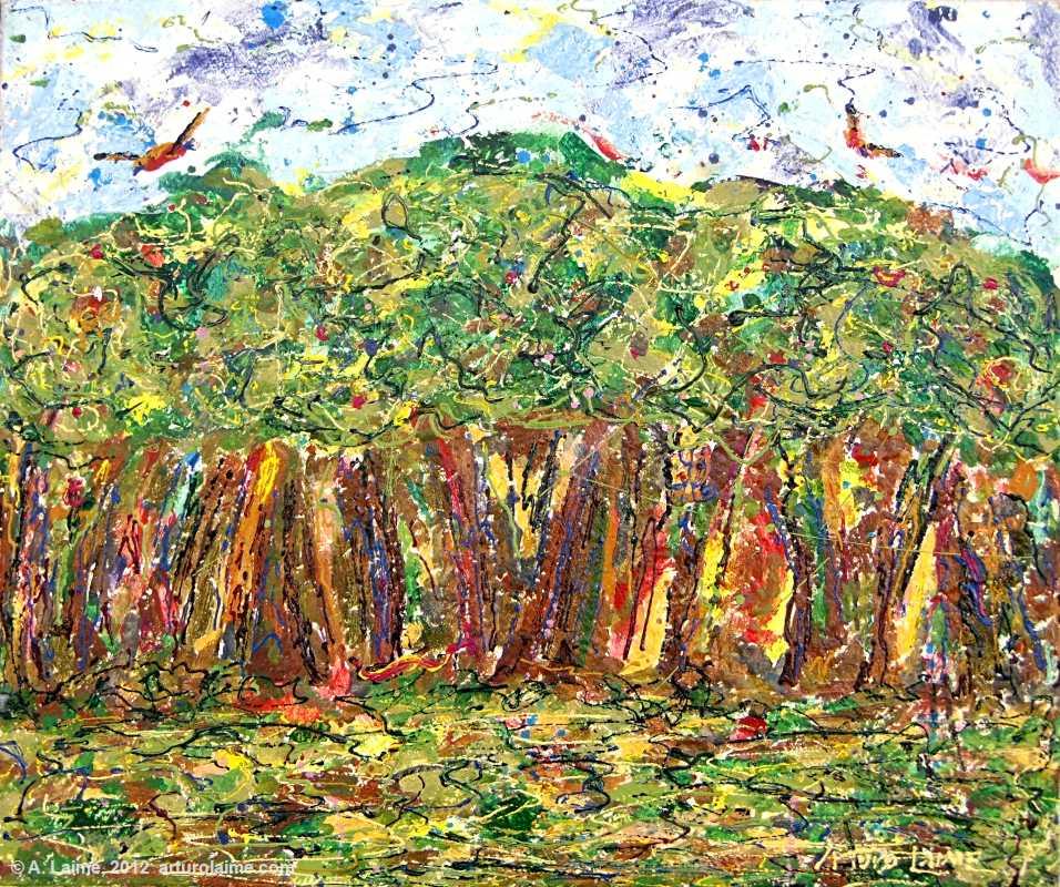 Yanayacu Forest