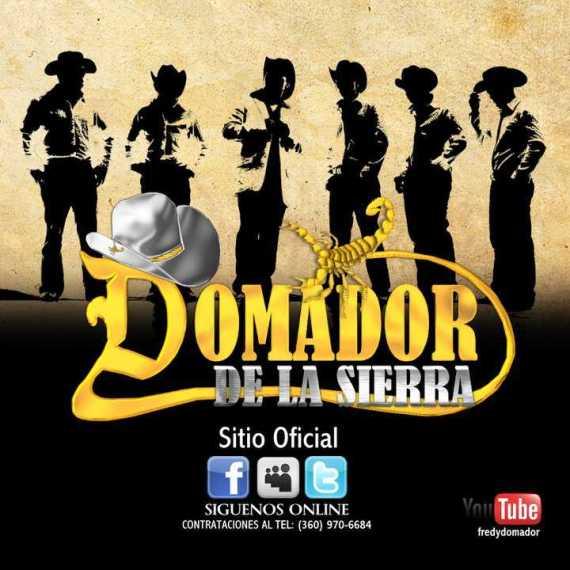 Domador_DLS