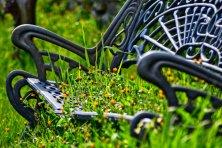 Atrapado-en-primavera-web