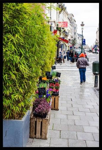 Bruxelles_2014 (38 sur 49)-resized