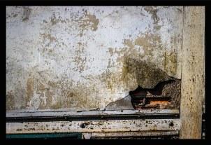 photo-11-resized