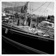 Bateaux - Saint Cyprien Plage (13 sur 31)